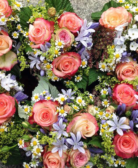 blumen und pflanzen pflanzen aus pflanzen und pflegen tulpen f r