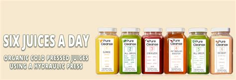 home juice cleanse plan pure juice cleanse freshly prepared juices organic