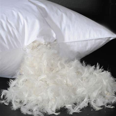 cuscino piume d oca cuscino di piume acquista a poco prezzo cuscino di piume