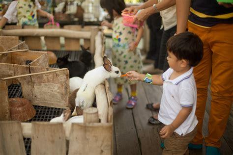 Mini 3 Di Bandung 10 tempat wisata anak di bandung yang wajib dikunjungi