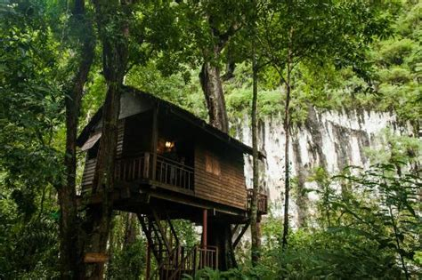 Lime Stone Cliffs Khao Sok Picture Of Our Jungle House Khao Sok National Park