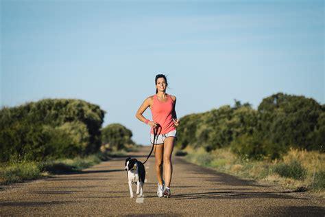 imagenes animales haciendo ejercicio 191 sabes c 243 mo hacer ejercicio y disfrutar de tu perro al