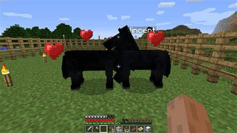 what can you make with pony minecraft baby