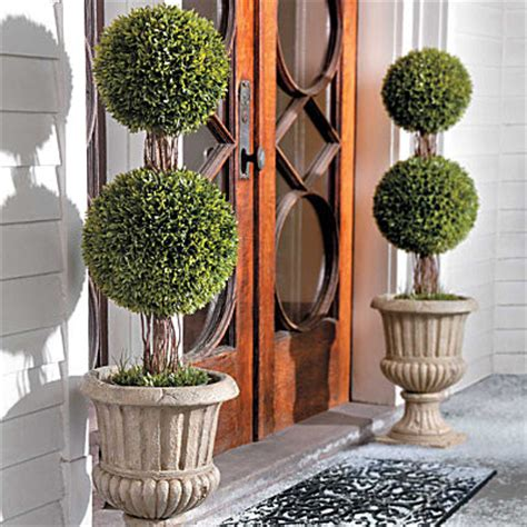 outdoor christmas topiary ideas 36 quot podocarpus topiary contemporary outdoor decorations by
