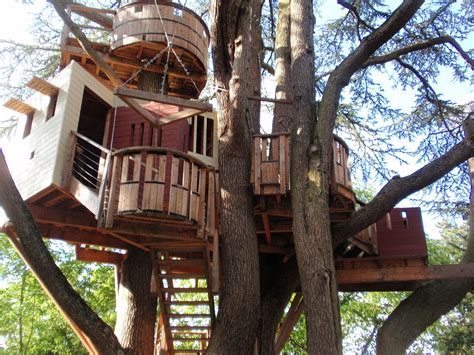 house trees tree house wikipedia