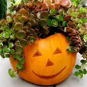 Pumpkin Topiaries - fall container garden ideas