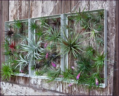 Is an image part from quot beautify your patio trough garden wall art