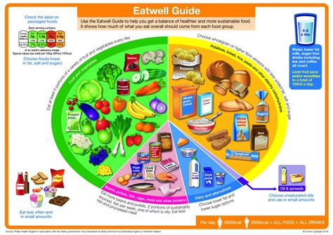 for healthy aging a guide to lifelong well being books the new eatwell guide dietitian s