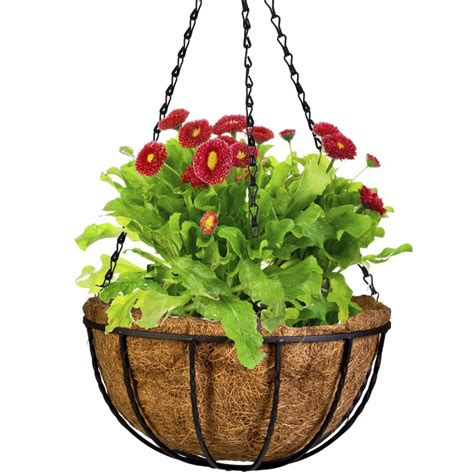 hanging pot online buy wholesale wall pots from china wall pots