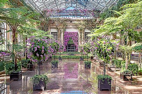 longwood gardens tickets orchid extravaganza at longwood gardens the antidote for