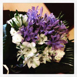 fiori con la lettera a l alfabeto dei fiori la lettera a