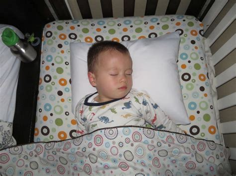 Where To Buy Toddler Pillows by How To Buy The Best Toddler Pillow 171 The Leo Africanus