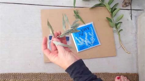 How To Make Cyanotype Paper - how to make a cyanotype or sun print using already