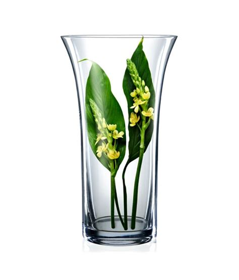 Bohemia Vase by Bohemia Vase Design Clear Glass Glass Vase Medium