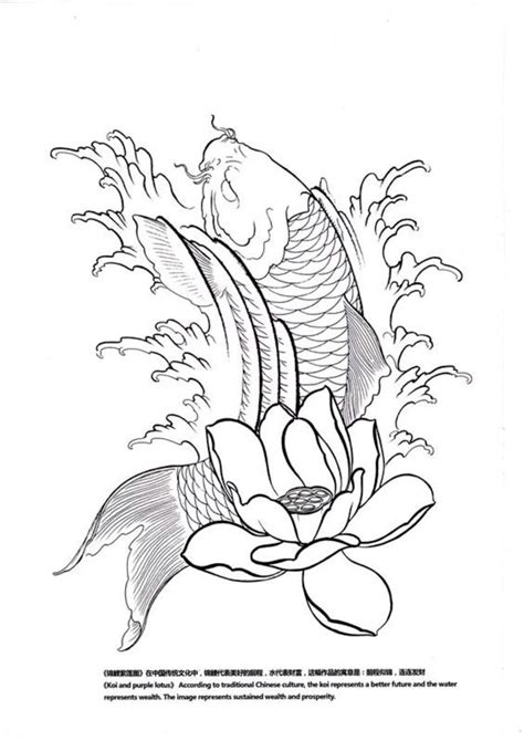 sketchbook koi 1000 images about koi designs on fish