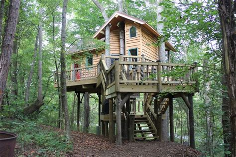 Dale Jr House by Dale Earnhardt Jr Treehouse Featured On Animal Planet Nascar