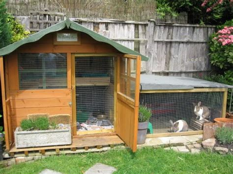 Rabbit Houses by Advice On This Rabbit Kingdom Rabbits United Forum