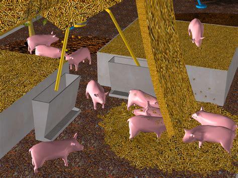 pig city carrot city pig city