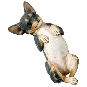 laying on back chihuahua tri coat laying on back statue