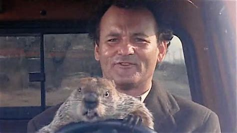 groundhog day with bill murray healing through groundhog day bos