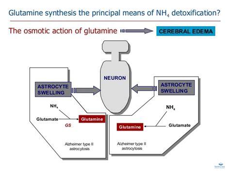 Detoxing The Csf by Neurotossicit 224 Iperammoniemia Martinelli