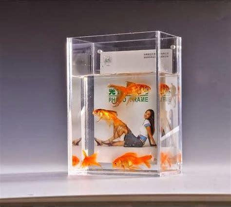 Aquarium Acrylic Jakarta aditya production jakarta terima pembuatan aquarium