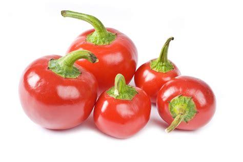 red hot peppers blog john vena inc