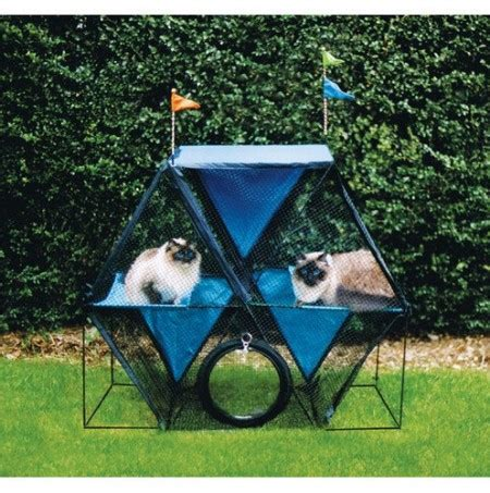 outdoor cat houses for multiple cats large dog houses for multiple dogs dog pet photos gallery ol20e9x3on