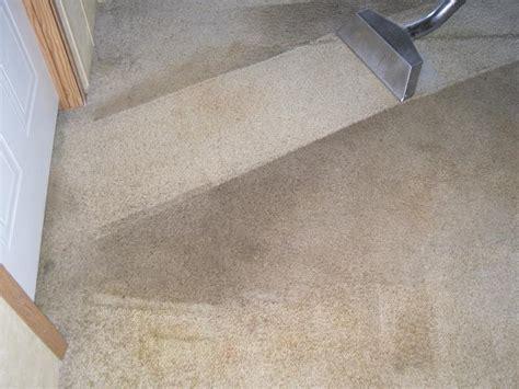 carpet steam cleaning king s carpet cleaning atlanta ga