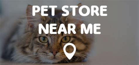 pet stores with puppies near me tim hortons near me points near me