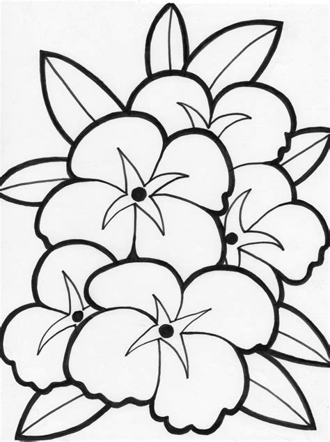 Coloring Pages For Flowers Free Flower Coloring Pages Flower Coloring Page