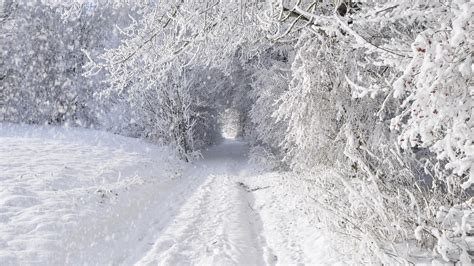 To Snow by Snow Path Hd Wallpapers