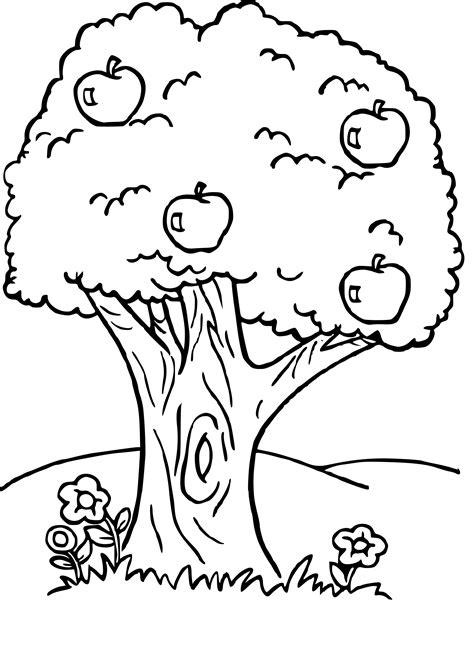 Coloriage Arbre Fruitier Dessin 224 Imprimer Sur Coloriages Jeux De Dessin Et Coloriage L