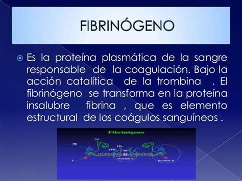 proteinas o protidos proteinas o protidos