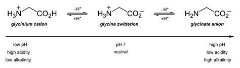 Histidine Protonation by File Glycine Protonation States 2d Skeletal Png