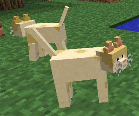 Mini Animal Piano By Mainanbayiku kitties technic pack wiki fandom powered by wikia