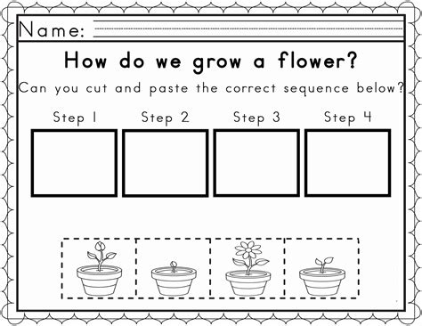 the cycle of a plant worksheet plant cycles worksheets kidz activities