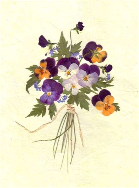 the flowers art and pressed flower art pictures pressed flora