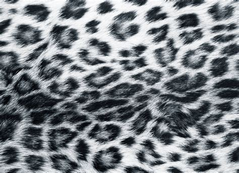 Animal Print by Animal Print Desktop Backgrounds Wallpaper Cave
