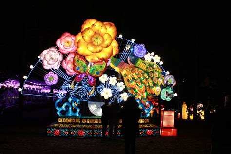 chinese light festival cary nc chasing lights nc chinese lantern festival got the