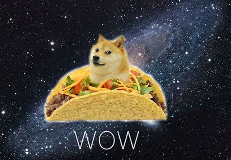 Dog Meme Wow - oh wow so doge the meme of the day trigger plug
