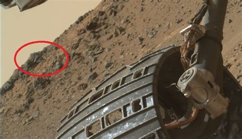 latest images from the mars curiosity rover for june 23rd 2014 did mars curiosity rover stumble upon a martian alien