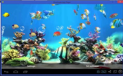 aquarium live wallpaper hd for android youtube koi fish live wallpaper free youtube