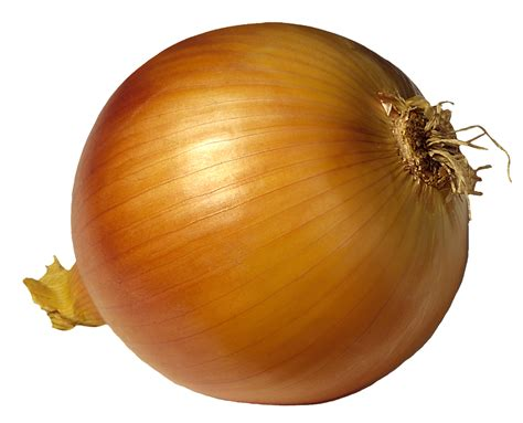 onion links onion link 12 bing images