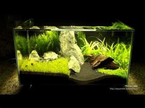 beleuchtung nano aquarium fluval edge mit beleuchtung nano aquascape