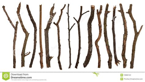 and sticj twigs stock photography image 18966122
