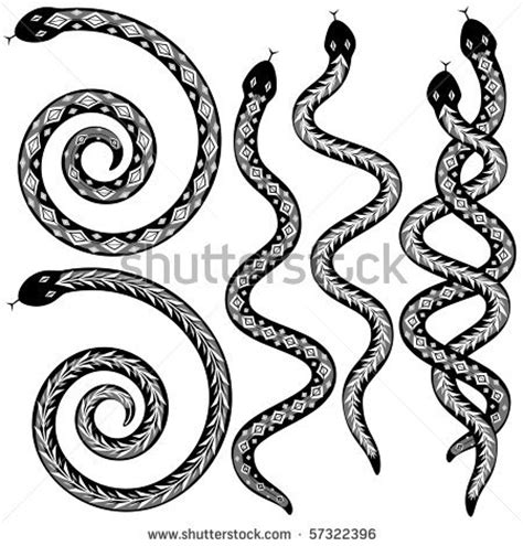 coiled rattlesnake clipart clipart panda free clipart