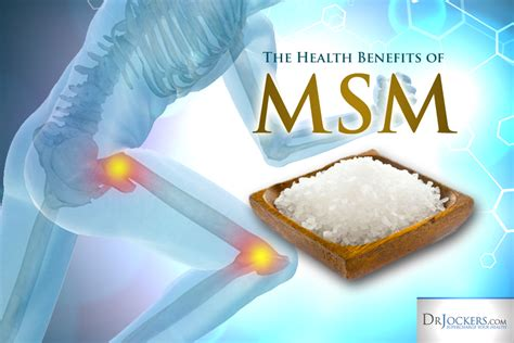 The Ms M by The Top 5 Health Benefits Of Msm Drjockers
