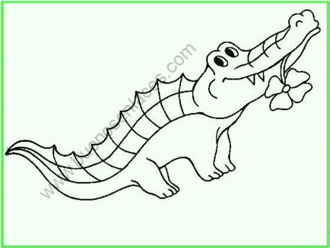 imagenes de animales carnivoros para colorear dibujos de animales salvajes para colorear