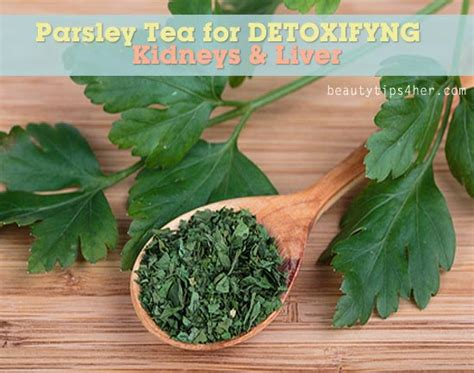 Parsley Detox Kidneys by Parsley Tea Benefits Detoxifying Kidneys For A Blemish